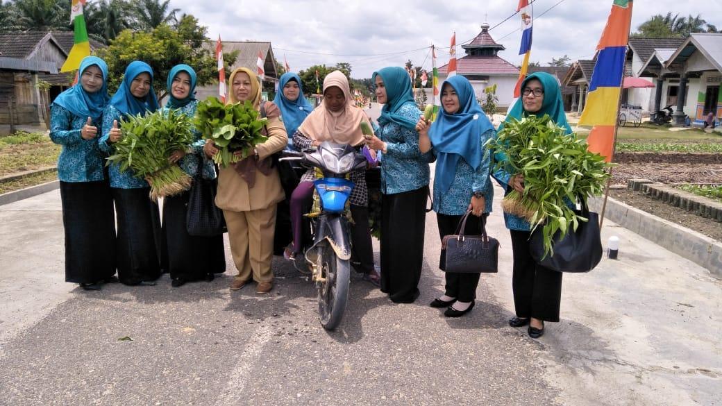 Pemanfaatan Lahan  Pekarangan untuk Pengembangan Komoditi Hortikultura