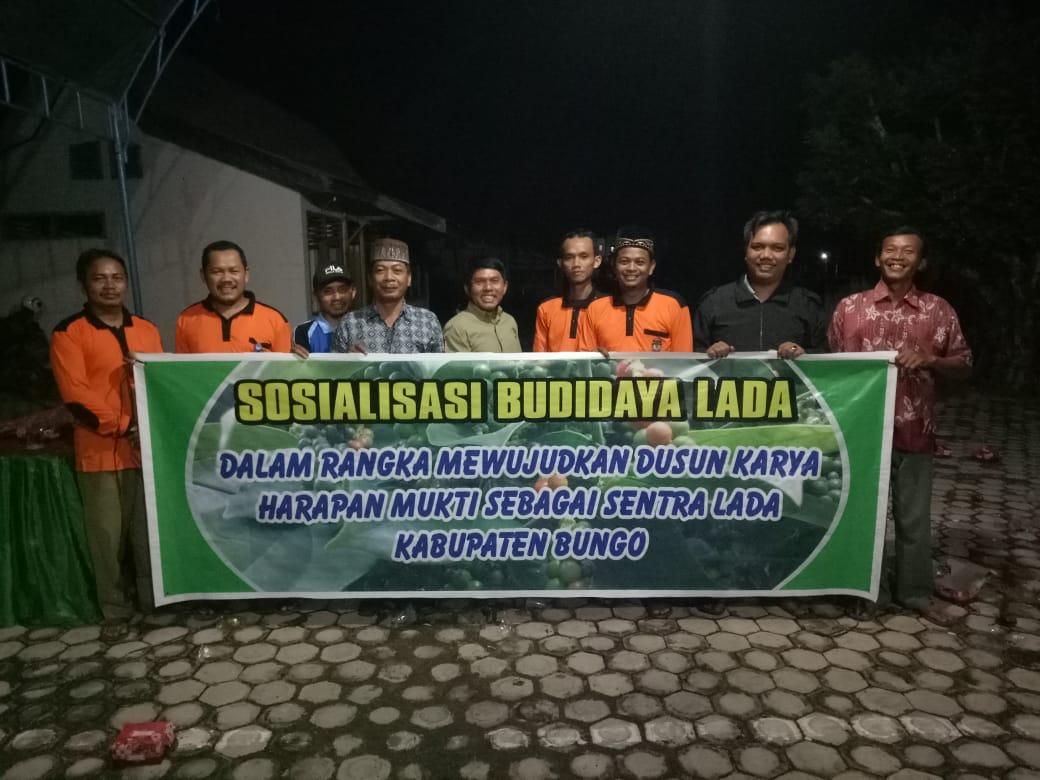 Sosialisasi Budidaya Lada